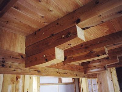 所沢の木に家完成